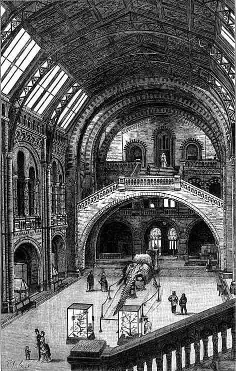 British Museum Foyer : British museum natural history central hall